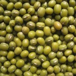 Indian Cooking FAQ – Questions from our readers! What can I make with mung beans?