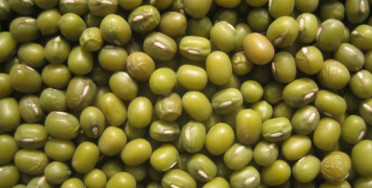 Indian Cooking FAQ - Questions from our readers! What can I make with mung beans?