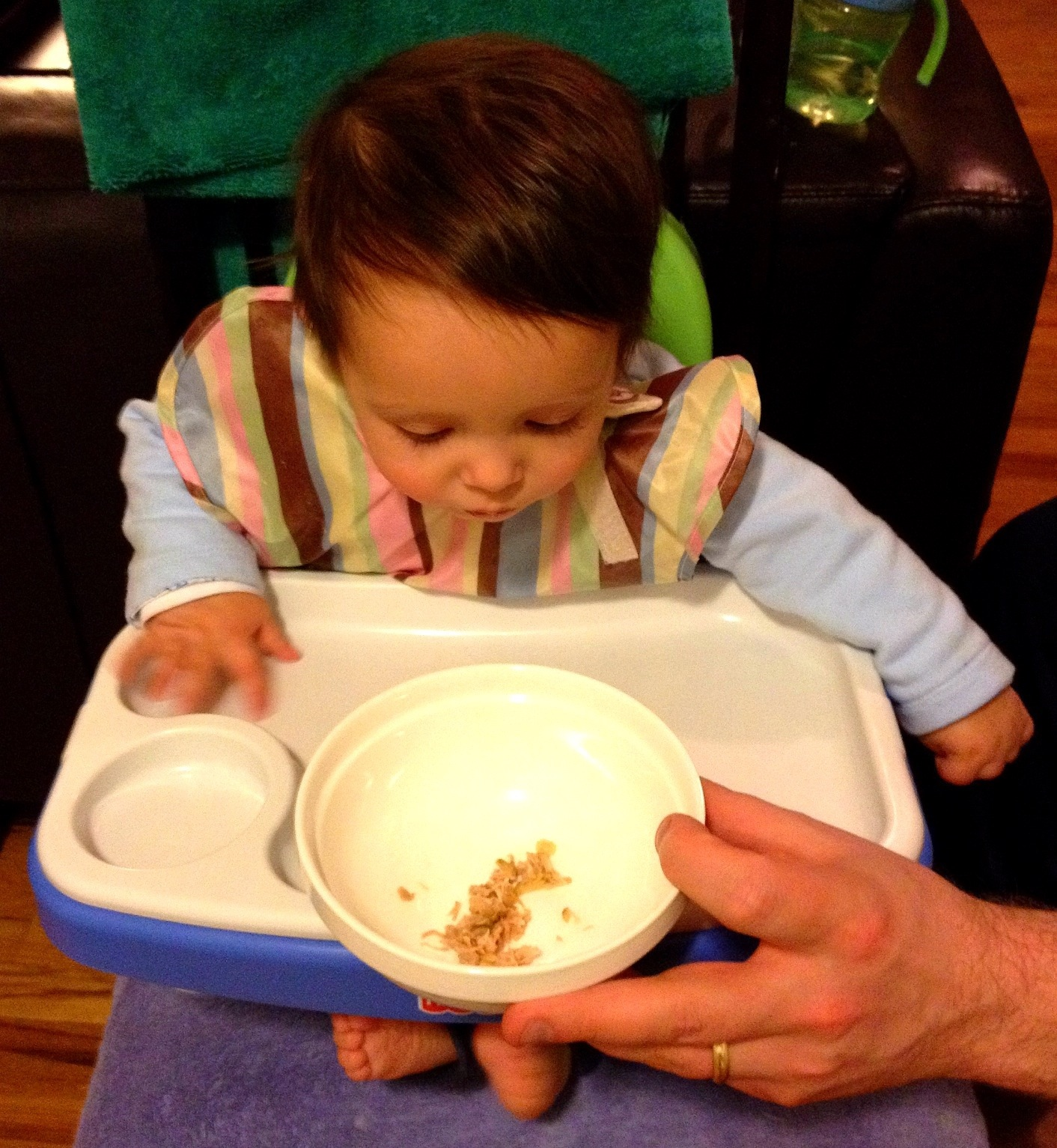 Introducing indian food to babies big apple curry forumfinder Choice Image
