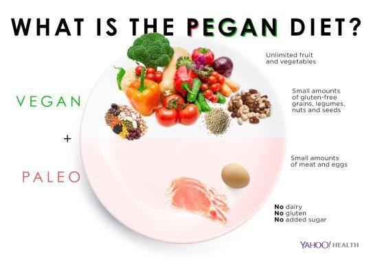 All Raw Food Diet Plan
