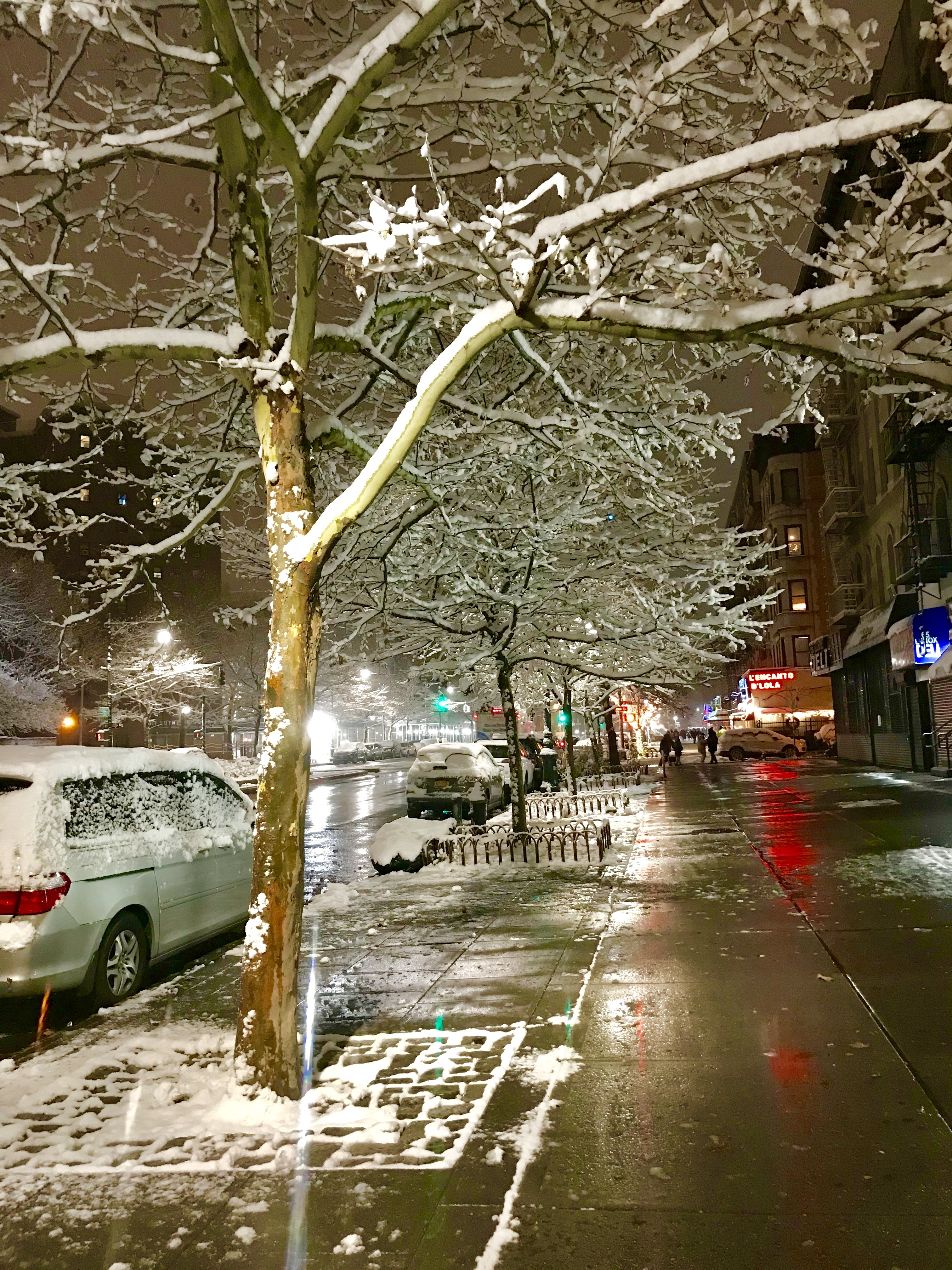 First snowfall of 2017 in Harlem